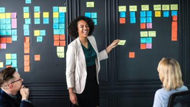 Photo of Organization: The key for productivity
