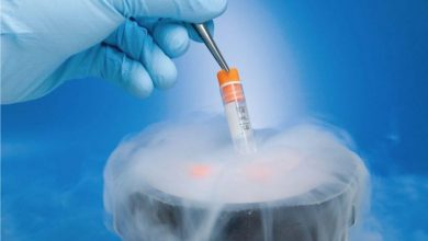 Photo of Aastha Fertility is Best for Frozen Embryo Transfer? Know How