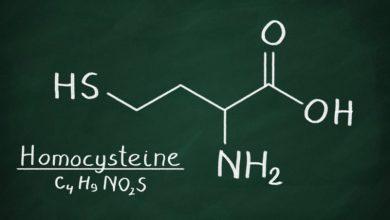Photo of Dangers Of Homocysteine
