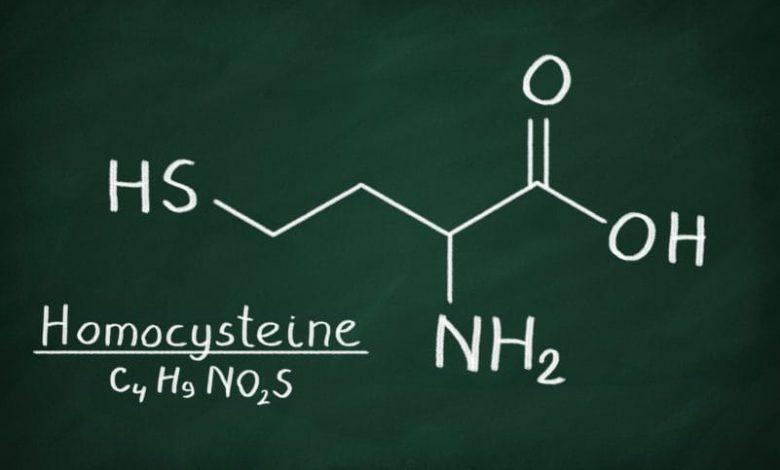 Dangers Of Homocysteine