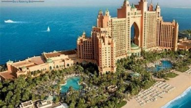 Photo of Best Dubai Tour Packages to Book with Roaming Routes