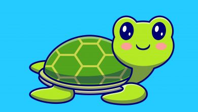 Photo of Knowing These Secrets Will Make Your Turtles Drawings Look Amazing