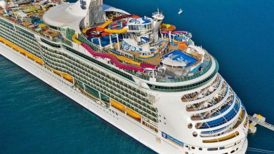 Photo of Best Cruises Particularly Designed for Kids