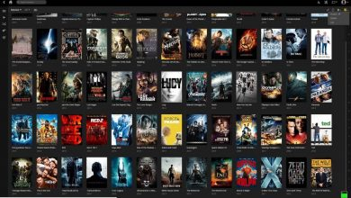 Photo of Tamil Rocks – The Full Movie Downloading Site