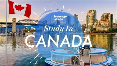 Photo of The Top Colleges for Study  BS in Canada