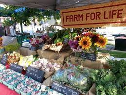Photo of Certain Types Of Coverage Available To Farmers Market Owners